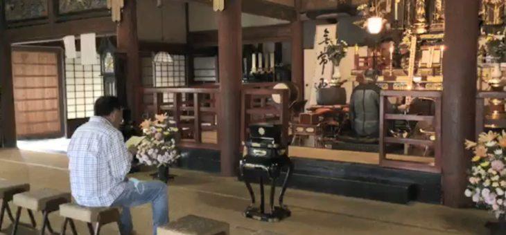 朝のお念仏の会 Temple Morning のご案内