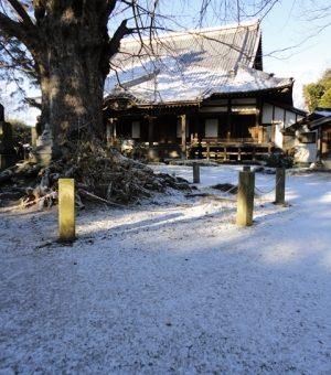 正月のやぶ入りは、今冬一番の寒さ