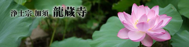 お話の会(11/28)「 お万の方を生んだ正木氏と加須」(講師:早川 清 氏)